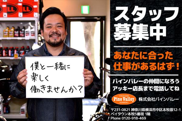 【求人】横浜本牧パインバレーのスタッフ募集