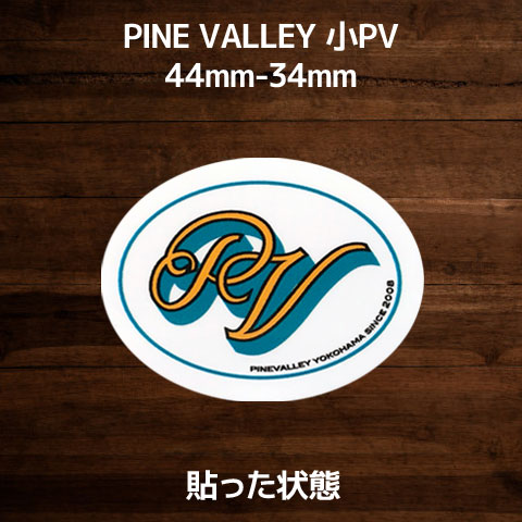 PV-SAST-04_2