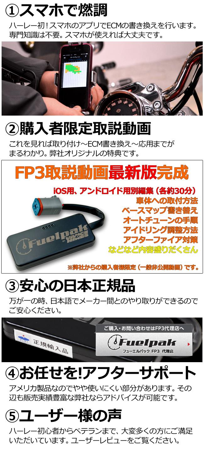 fp3setumei_edited-1