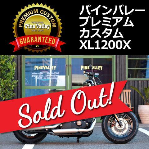 2011XL1200X_99