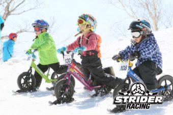 snow_strider