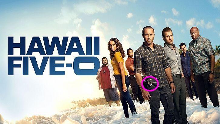 hawaii-five-0 1