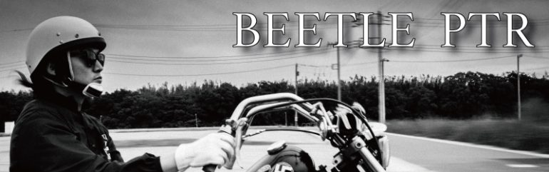 BEETLE-PTR-web