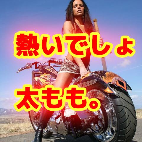 夏商品紹介【サドルシールド】太ももを守れ!しかもお手軽に。
